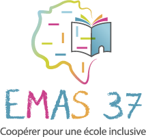 EMAS 37